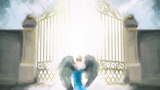 BoyPanda Heaven Vibes