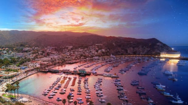 Groove Cruise Announces Groove Island on Catalina Island (EDM.com Feature)