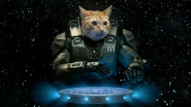 Master Chief cat DJ
