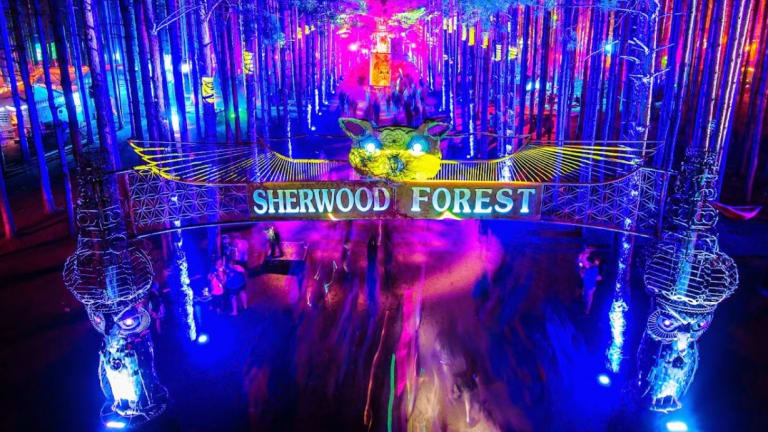 Electric Forest Makes Dreams Happen with The Wish Machine