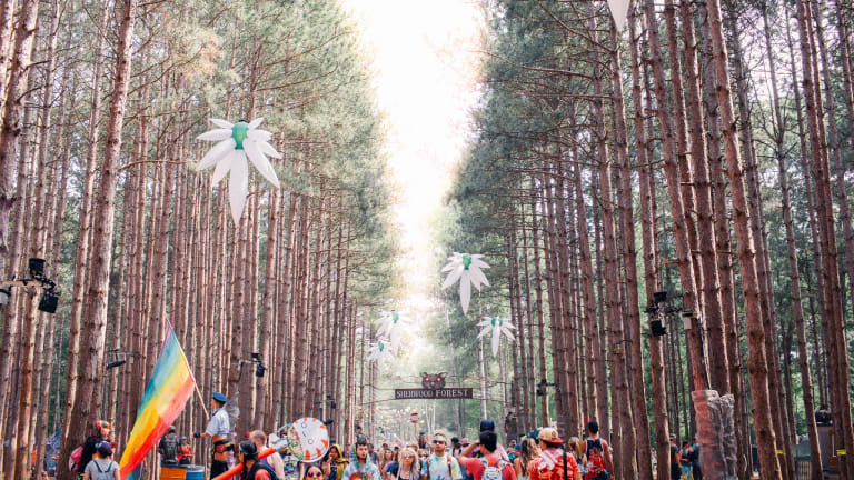 Electric Forest Left Behind A Mighty Mess