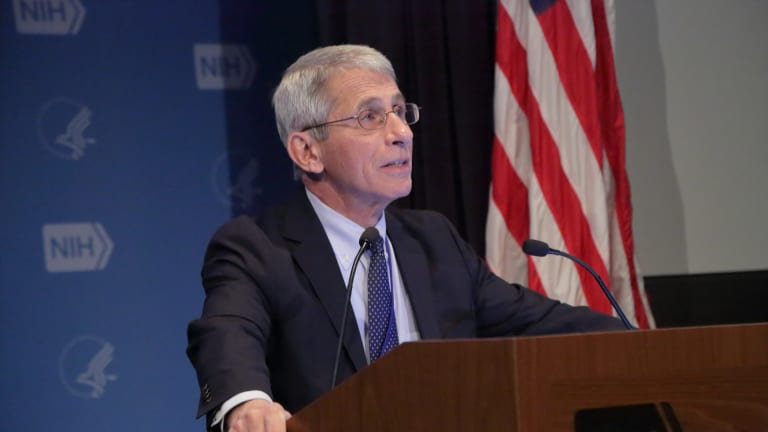 Dr. Fauci Says Concerts Could Return Sometime in the Fall