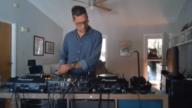 [WATCH] Wild Bear Interrupts Livestreamed DJ Set
