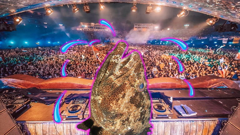 Ultra Music Festival Likely Stressful to Toadfish, According to New Study