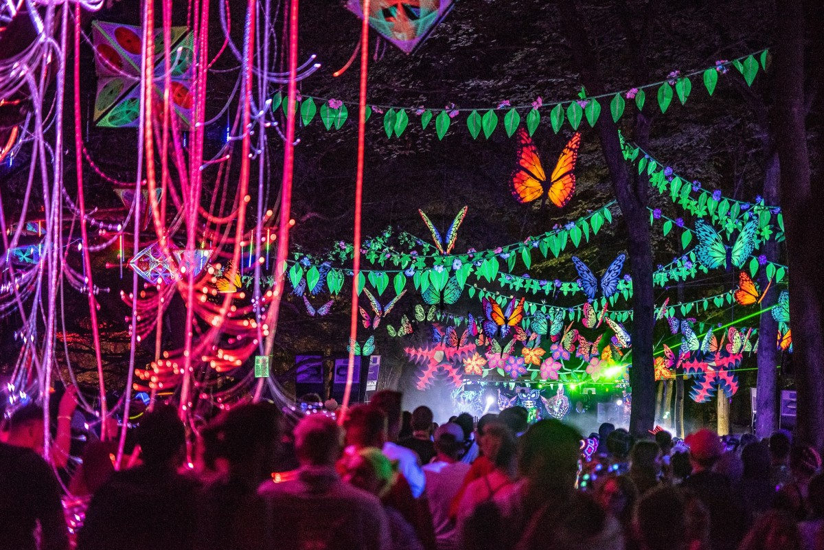 The colourful forest parties