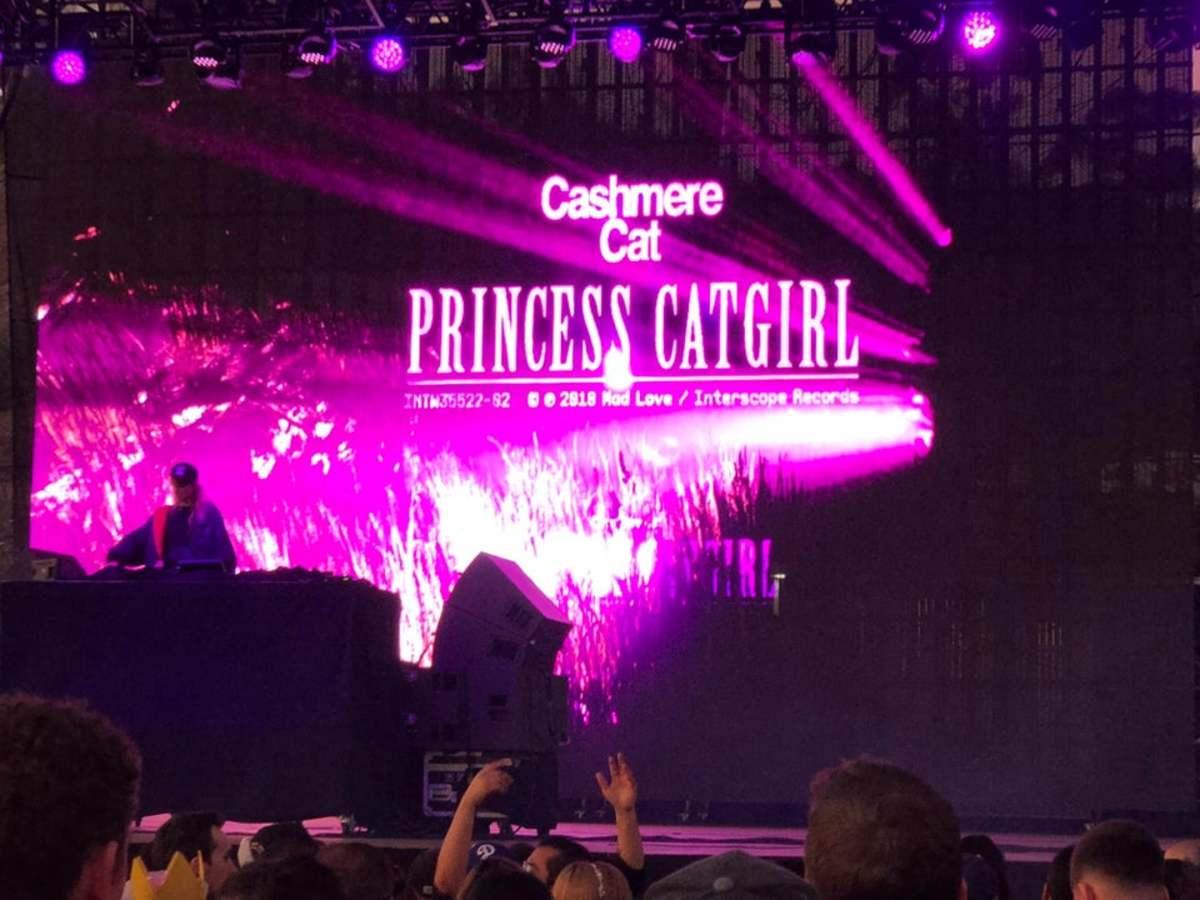 Cashmere cat Princess Catgirl