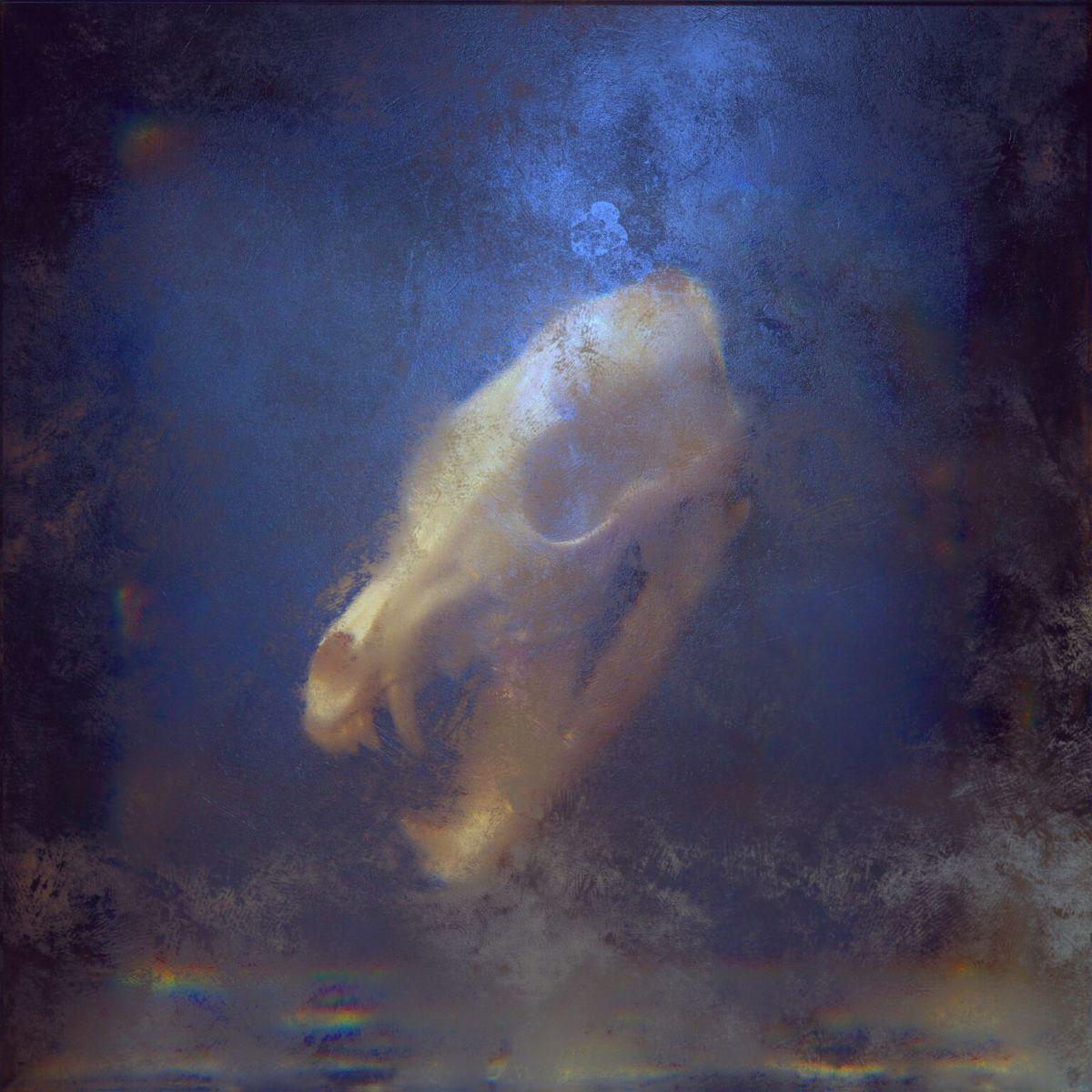 KAYZO Unleashed LP Cover Art
