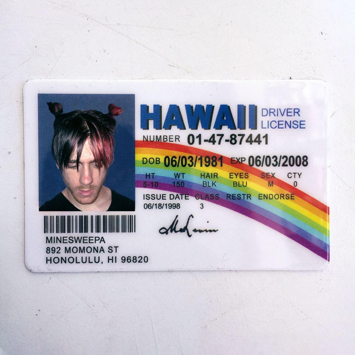 Minesweepa Fake ID