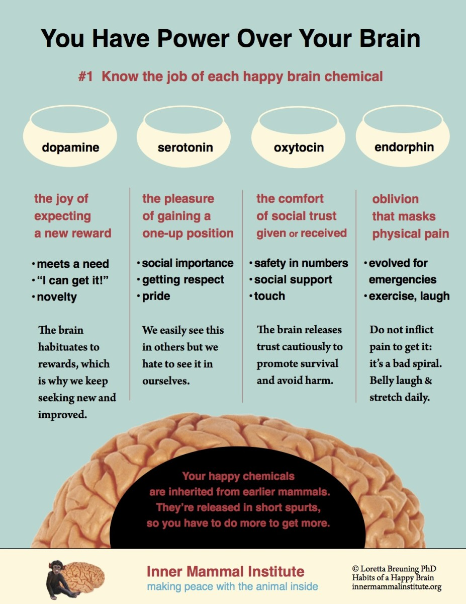 Know your brain chemicals