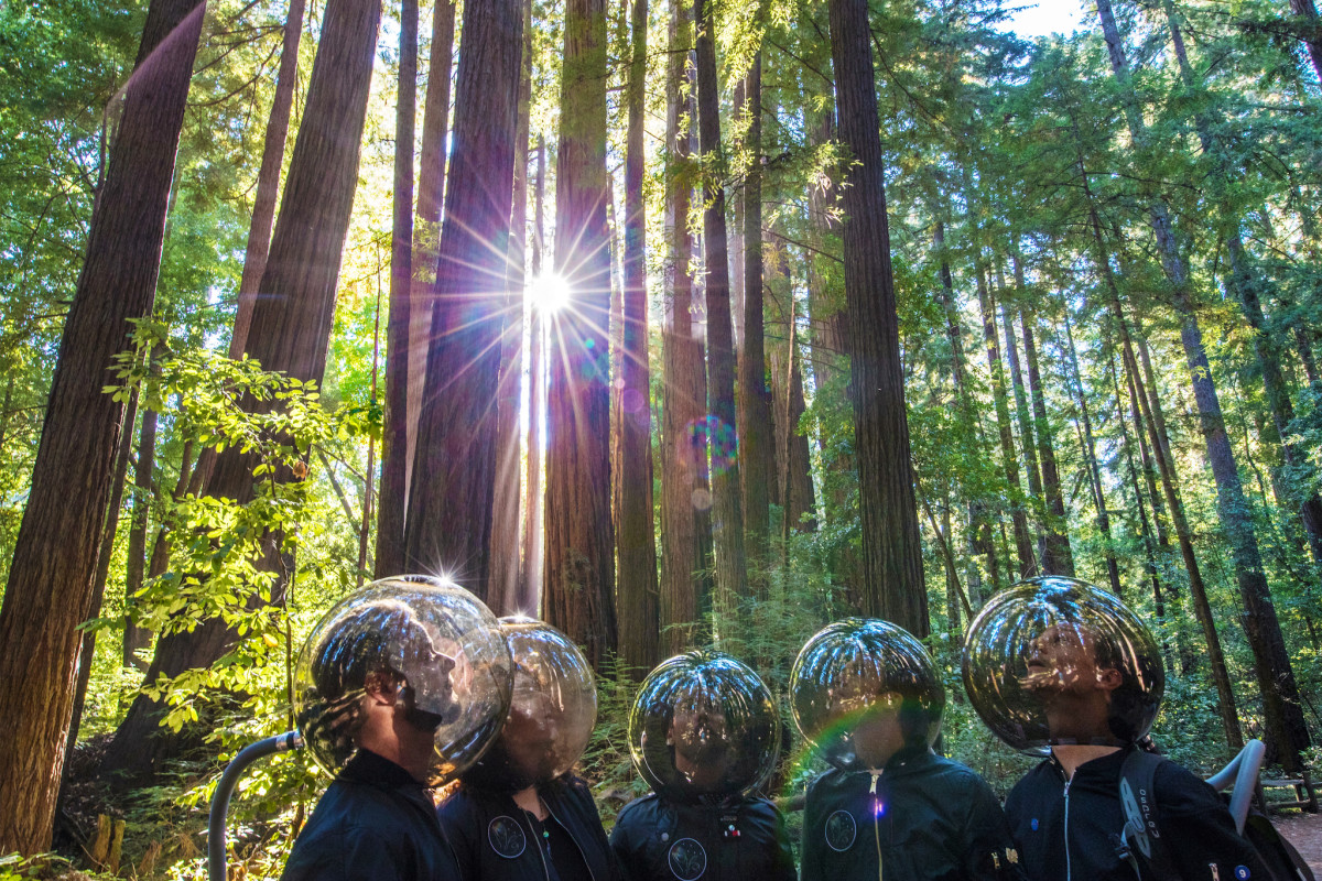 sts9 in bubble helmets in a forest