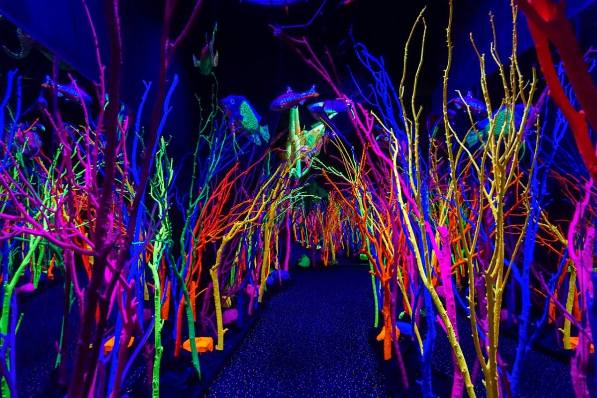 meow-wolf-neon-forest