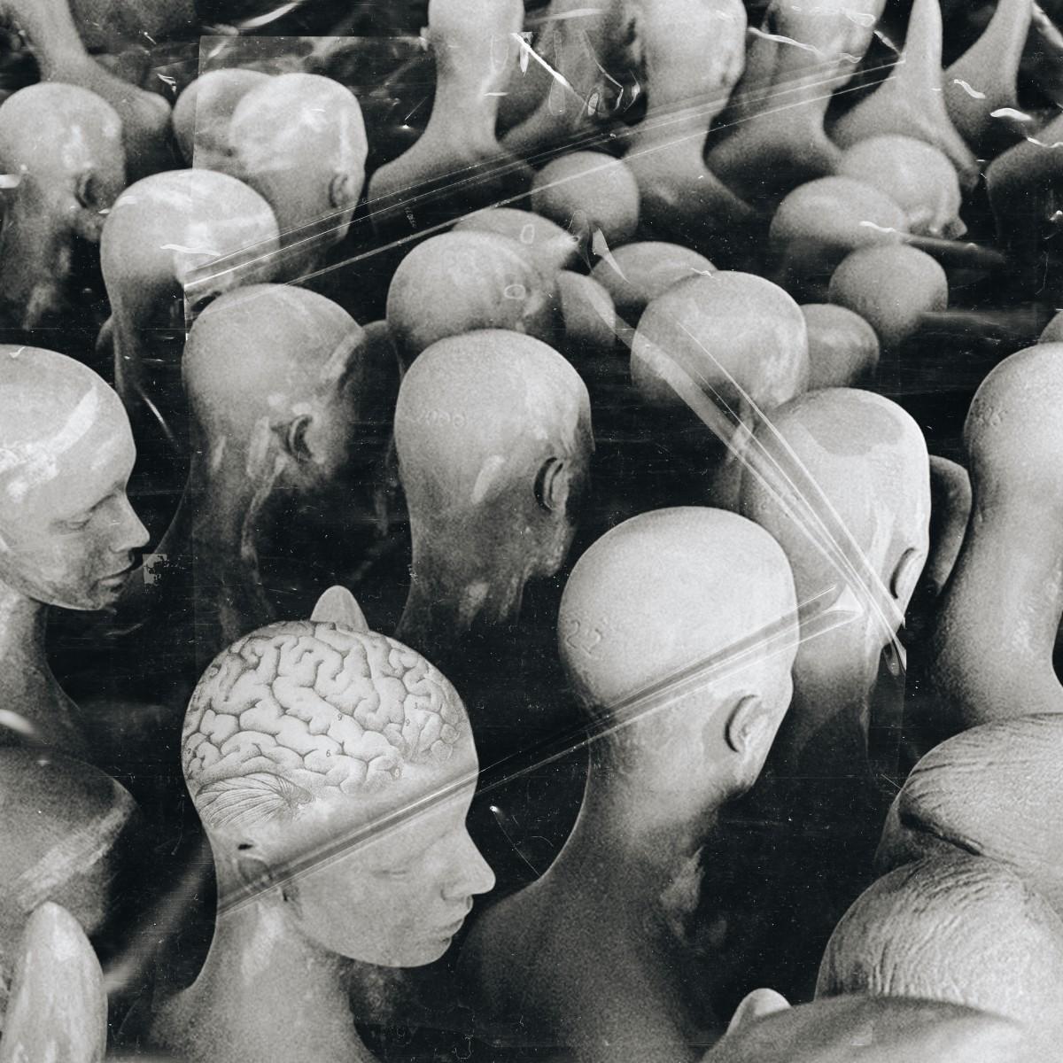 Brainwashed Art