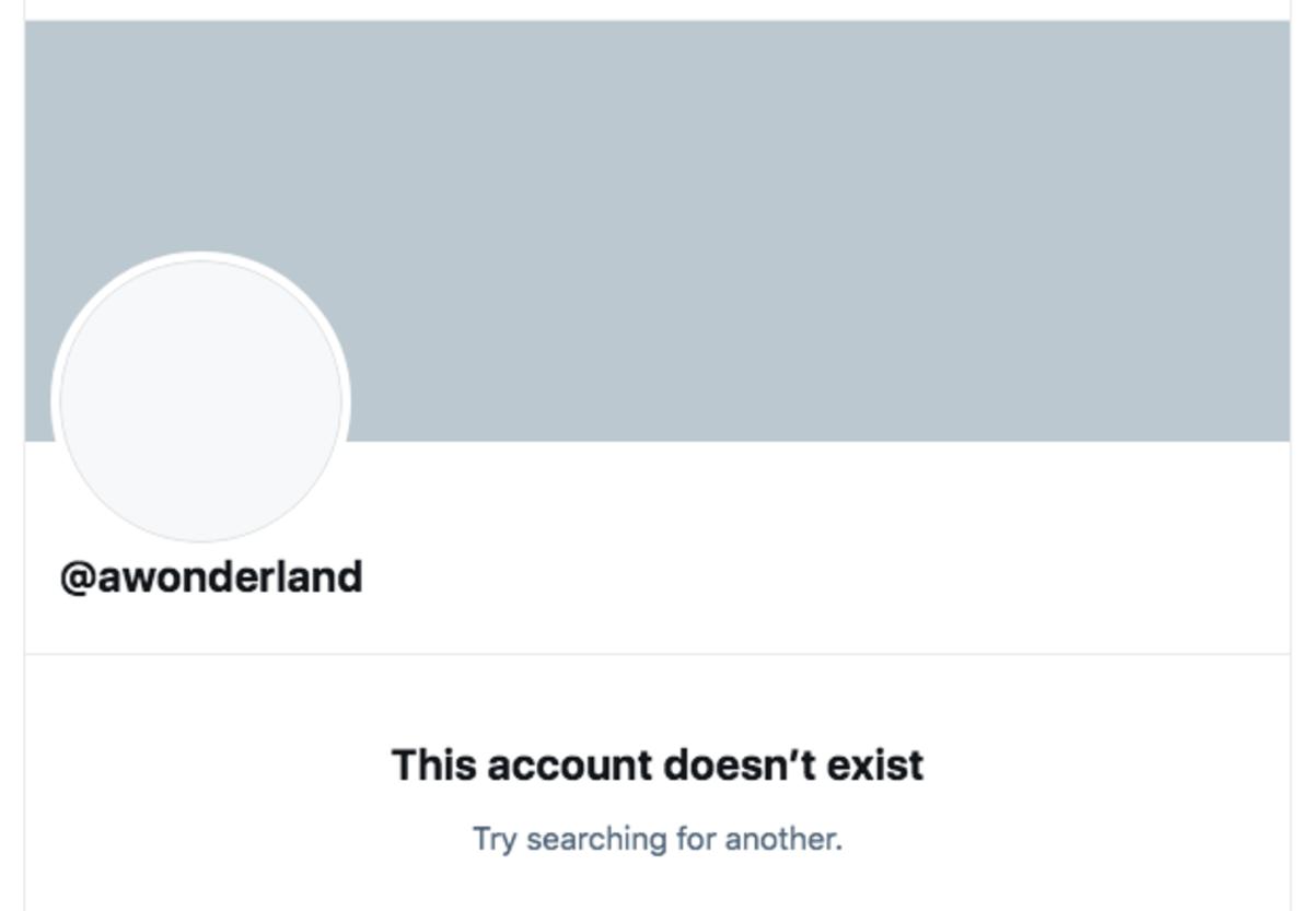 Screenshot of Alison Wonderland's deactivated Twitter account. [Screenshot by EDM.com]