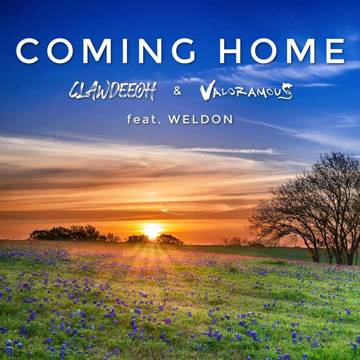 """Artwork for Clawdeeoh and Valoramous' """"Coming Home."""""""