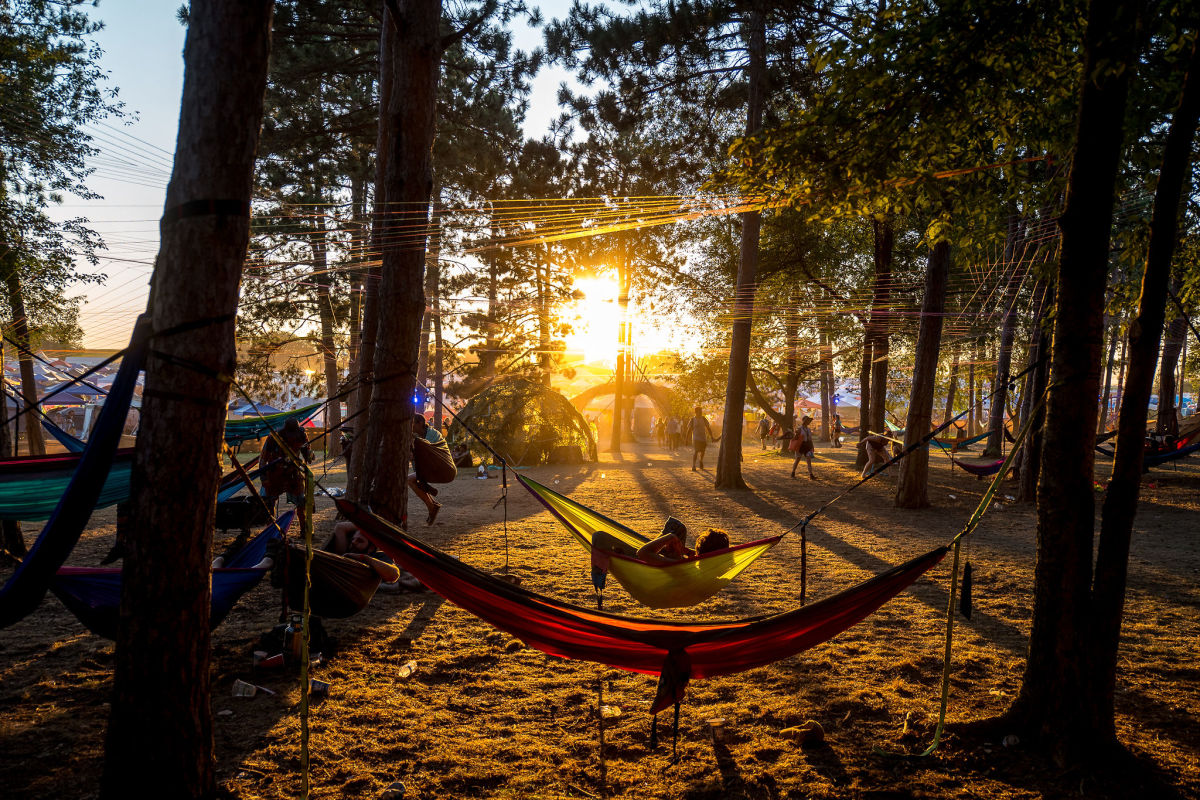 Festival attendees escaped the heat in the Illumination Woods with shaded hammocks and interactive art elements.
